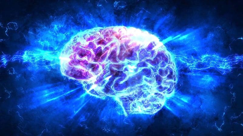 Casual FIlms Brain