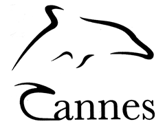 Cannes Dolphins Corporate Film Awards logo