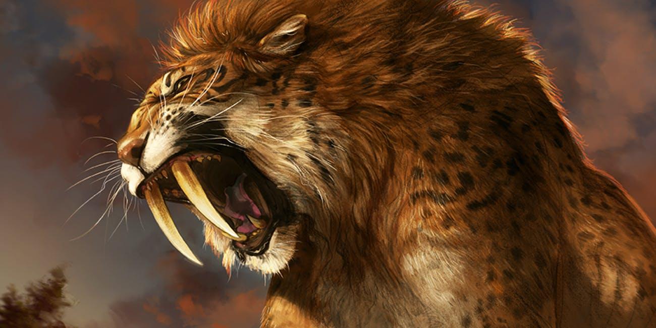 saber-tooth-cat
