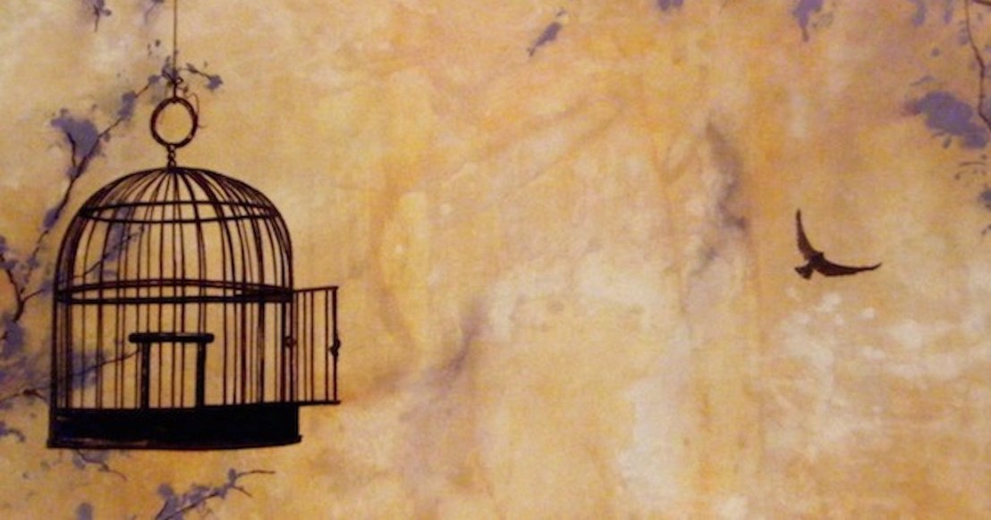 bird-escape-cage-1-1